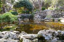 Koi fish pond and river grass and rocks at Zilker Botanical Garden.jpg