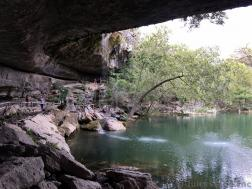 Arched Tree and Pool of Hamilton Pool Preserve.jpg