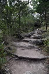 Stairway Made of Natural Rocks at Hamilton Pool Trail.jpg