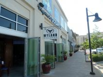 Wyland Galleries Ocean Blue Hill Country Galleria.jpg