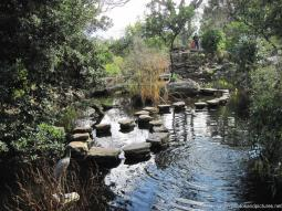 Zilker Botanical Garden Pictures and Photos