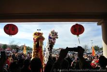 Lion Dance performers go way up high during Chinese New Year Celebration in Austin Chinatown 2014.jpg